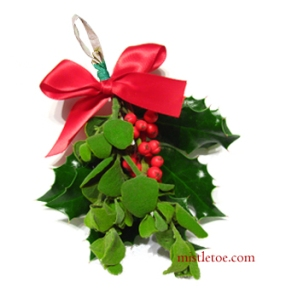 mistletoe-holly-sprig-new