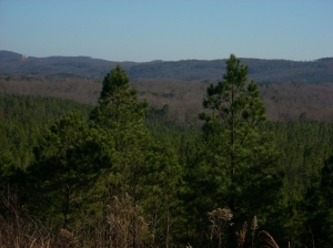 A view across the mountains from the top of Johnson Mountain