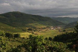 Coffee fazenda (plantation)