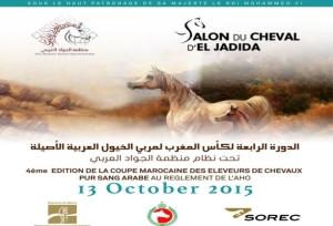 el jadida horse show 2015