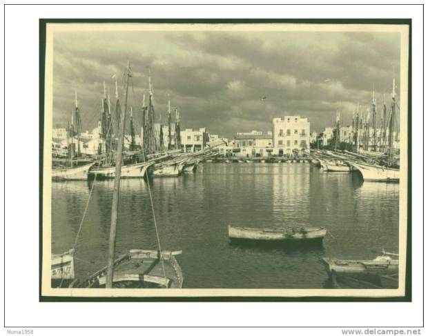 Sfax Harbor