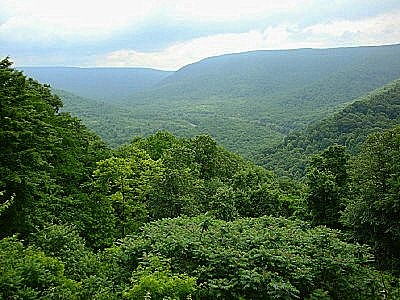 Allegheny_Mountains3