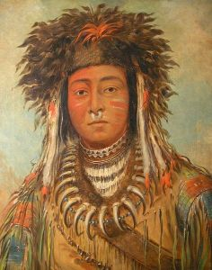 Boy Chief Ojibbeway, by George Catlin [Public domain], via Wikimedia Commons