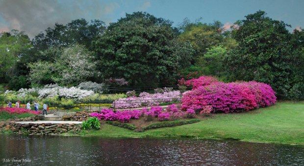 bellingrath_gardens___mobile__al_by_mikekw-d86hyjw