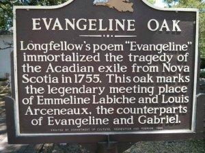 evangeline-oak