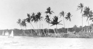 north-bank-miami-river-1890-1024x538
