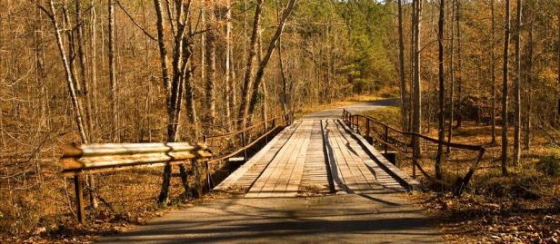 johnson-mountain-bridge