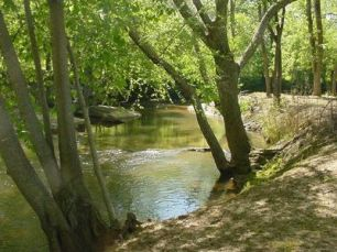 salacoa creek